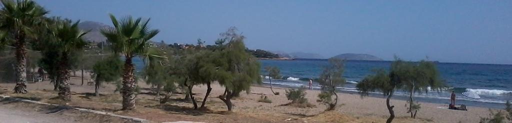 Αξίωση του Δήμου Κρωπίας για αποζημιώσεις σχετικά με τα χαμένα έσοδα από τη μη τοποθέτηση σημείων εξυπηρέτησης λουόμενων (καντίνων) στην παραλία Αγίου Δημητρίου